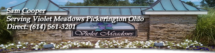 Violet Meadows Pickerington Ohio